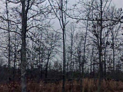 Saline County, Arkansas $750,000 : Little Rock : Saline County : Arkansas