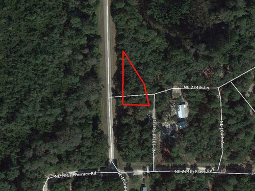 Lot Close To Island Lake : Fort McCoy : Marion County : Florida