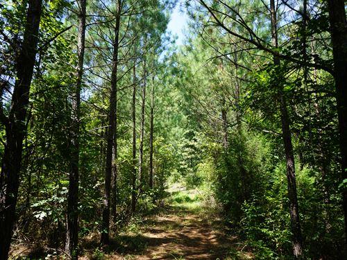 Wise Creek Tract : Monticello : Jasper County : Georgia