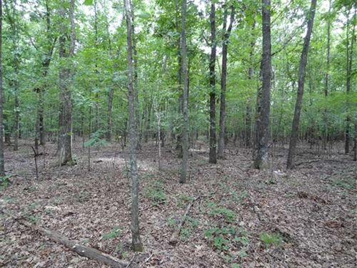 40 Acres Near Hurricane Lake : Bald Knob : White County : Arkansas