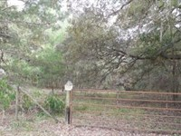 Owner Financing. A-445 : Melrose : Alachua County : Florida