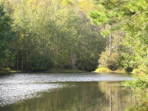 Beautiful Land With Lake & Timber : Madison : Florida