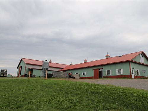 Equestrian Facility On Equine Alley : Nelson : Madison County : New York