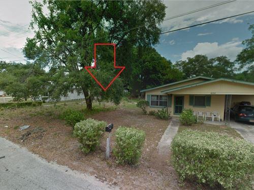 .2 Acres In Winter Haven, FL : Winter Haven : Polk County : Florida
