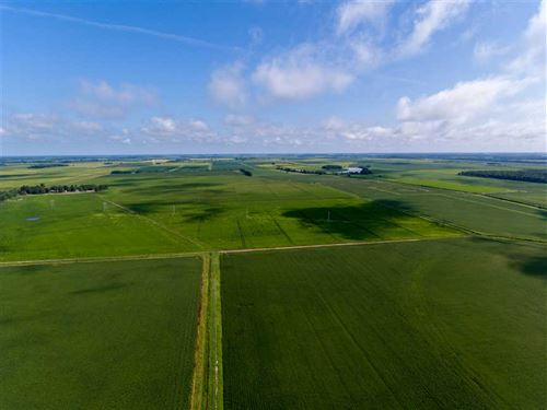 681 +/, Row Crop Farmland Acres : Waldenburg : Poinsett County : Arkansas