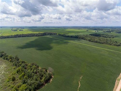 160 Acre Row Crop Farm, Poinse : Cash : Poinsett County : Arkansas