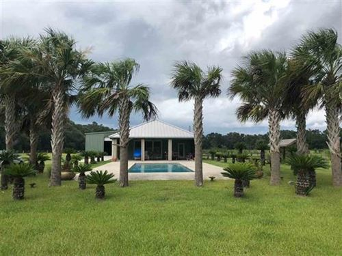 Working Cattle Farm With Great Home : Monticello : Jefferson County : Florida