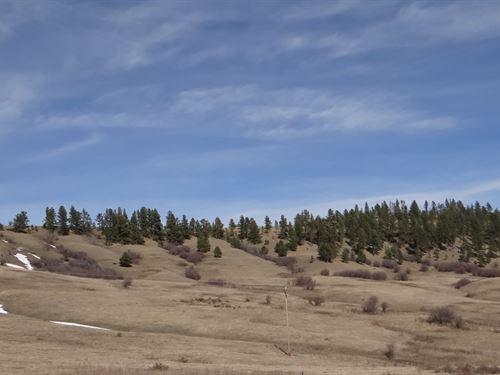 Central Montana Mountain Property : Lewistown : Fergus County : Montana