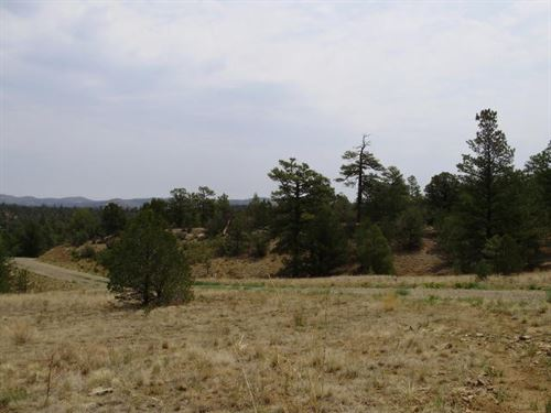 Small Country Acreage Weston : Weston : Las Animas County : Colorado