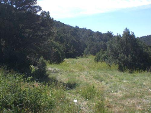 Rugged Parcel no Restrictions : Trinidad : Las Animas County : Colorado