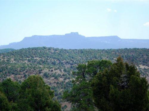 Wooded Mountain Acreage Trinidad : Trinidad : Las Animas County : Colorado