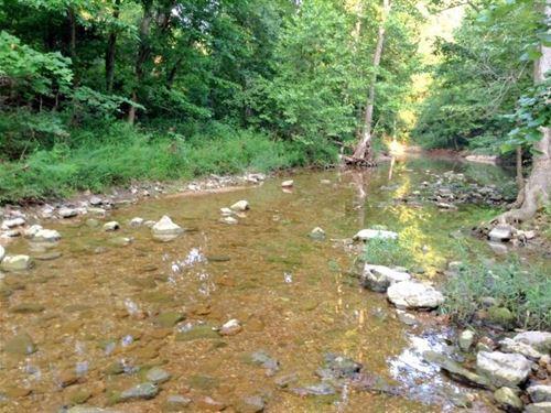 Hunting Property 180 Acres Ozarks : Ravenden : Randolph County : Arkansas