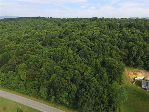 5.43 Acre Wooded Building Lot New : Max Meadows : Wythe County : Virginia