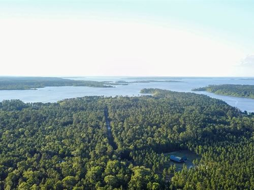 7.43 Acres Lake Sam Rayburn Land : Lufkin : Angelina County : Texas