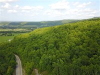 88 Acres of Timberland With Be : Marshall : Searcy County : Arkansas