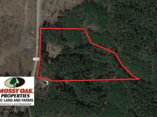 Reduced, 12.5 Acres of Residentia : Moncure : Chatham County : North Carolina