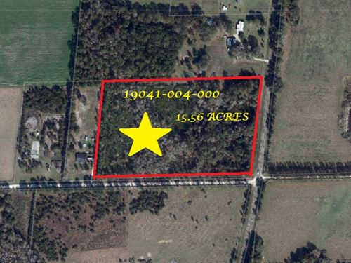 15.56 Acres A-549 : Hawthorne : Alachua County : Florida