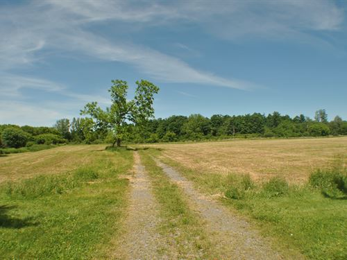 Prime Cazenovia Land Lot A : Cazenovia : Madison County : New York