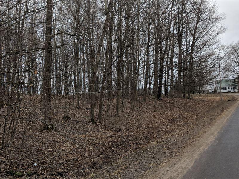 Cornet Lot With Deeded Frontage : Fulton : Oswego County : New York