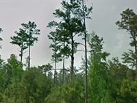 Flagler County, Fl $400,000 Neg. : Bunnell : Flagler County : Florida