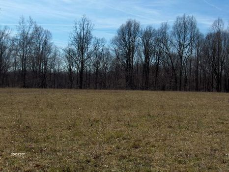 Land For Sale : Whitleyville : Jackson County : Tennessee
