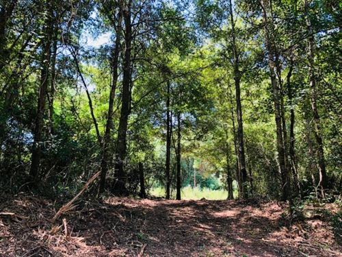 25 Acres Carto Road / Tylertown Ms : Tylertown : Walthall County : Mississippi