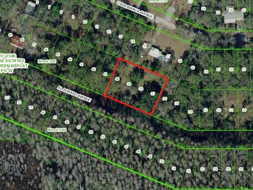 .35 Acres In New Port Richey, FL : New Port Richey : Pasco County : Florida