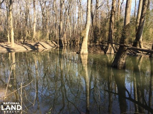Thurman Rogers Flats Cane Creek Bot : McRae : White County : Arkansas