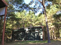 111 Acres Lake Sam Rayburn Retreat : Huntington : Angelina County : Texas