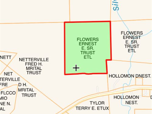 Unique 81 Acre Undivided Interest : Woodville : Wilkinson County : Mississippi