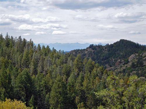 20 Ac Borders Government Land : Cripple Creek : Teller County : Colorado