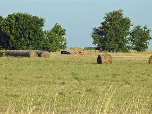 13.39 Ac, Dove Rd, Moody Isd, Bell : Moody : Bell County : Texas