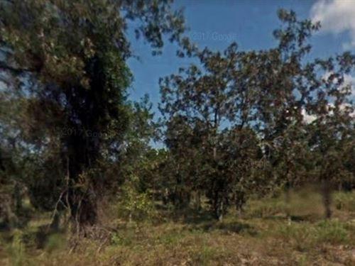 Marion County, Fl $15,000 : Marion : Florida