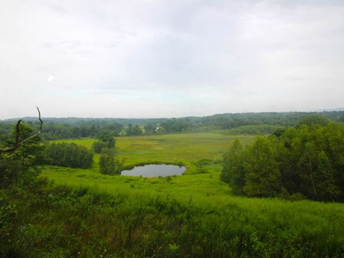 29.6+/- Acres Land : Shickshinny : Luzerne County : Pennsylvania