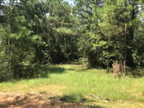 113 Acres On Fred Bacot Road In Pik : Summit : Pike County : Mississippi