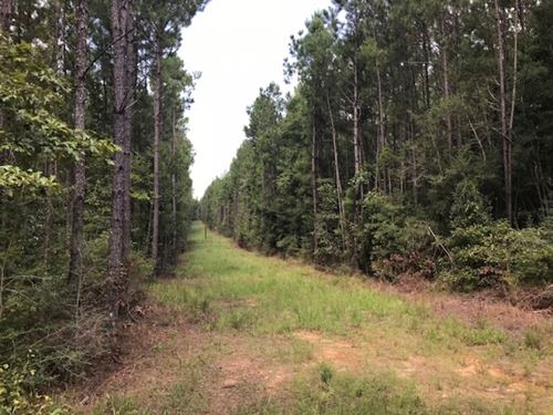 30 Acres On Hartwell Road In Pike : Summit : Pike County : Mississippi