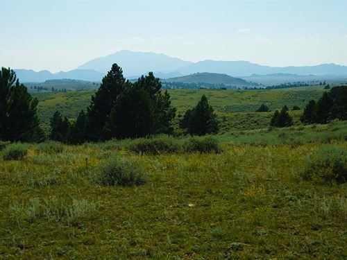 628 Acres in Wheatland, Wyoming : Wheatland : Platte County : Wyoming