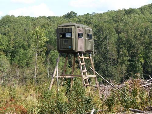 Gwc-207 Tract : Laurens County : South Carolina
