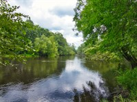 Edisto River Sportsmans Retreat : Branchville : Bamberg County : South Carolina