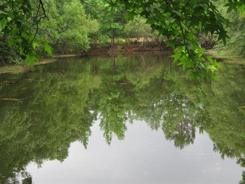 Maple Ridge Farm : Walterboro : Colleton County : South Carolina