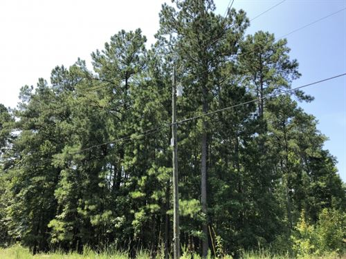 Crooked Creek Lot Near Lake : Eatonton : Putnam County : Georgia