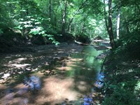 Beautiful Beaverdam Creek : Washington : Wilkes County : Georgia