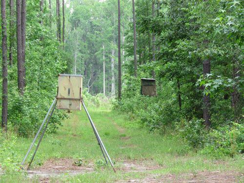 Oswald West : Grays : Jasper County : South Carolina