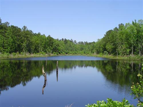 Wynn East Tract : Grays : Jasper County : South Carolina
