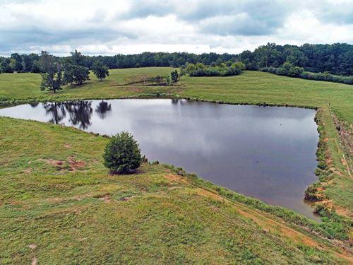 Beautiful 60 Acre Farm, 2 Ponds : Snead : Blount County : Alabama