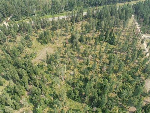 23 Acres On Cabinet Gorge Reservoir : Noxon : Sanders County : Montana