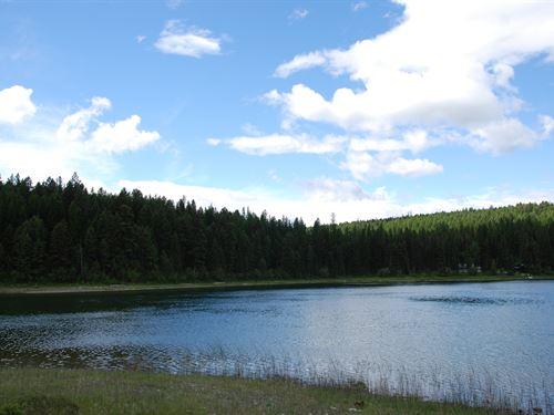 Peaceful, Serene Frank Lake : Fortine : Lincoln County : Montana