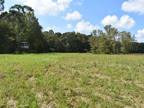 24-048 Conecuh River Tract : Brantley : Crenshaw County : Alabama