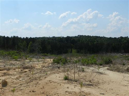238 Acres Winston County, Alabama : Natural Bridge : Winston County : Alabama