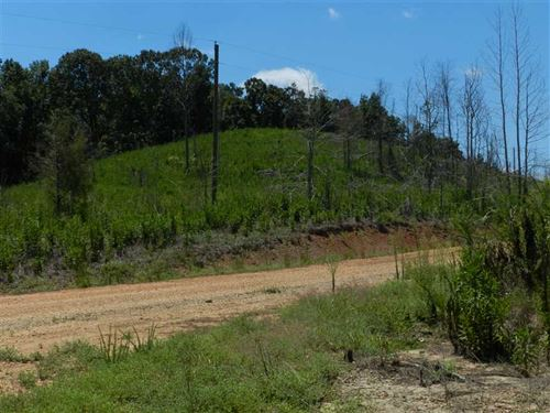 156.72 Acres, Dry Creek Road, MA : Hamilton : Marion County : Alabama